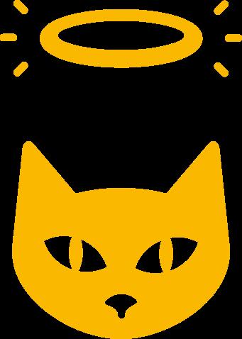 Cat on