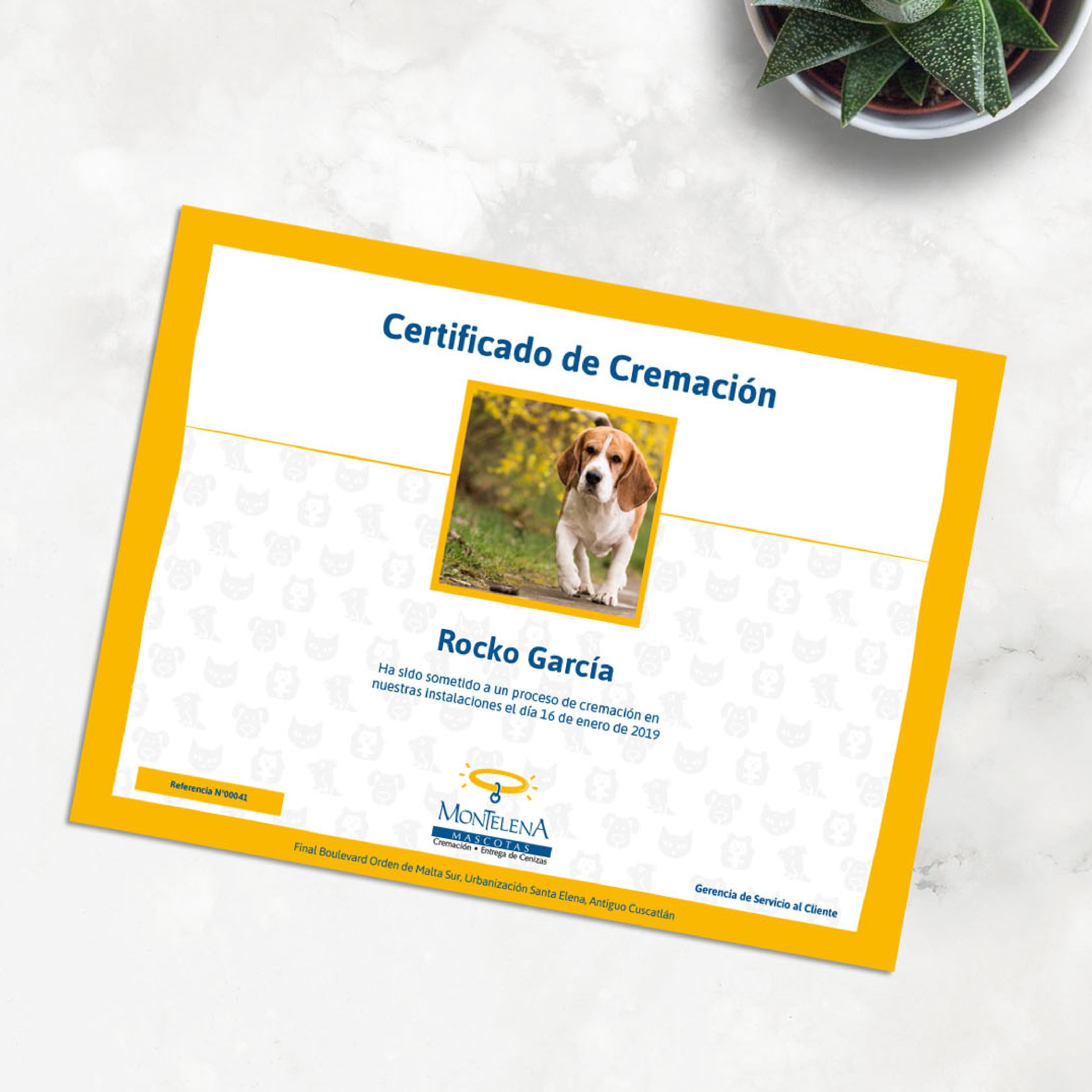 27. certificado