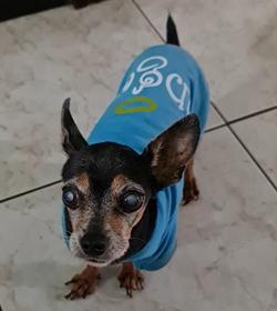 Cleo membre%c3%91o