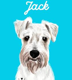 Jack morales